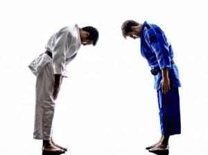 Judo bow