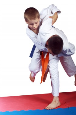 Judo competition kids