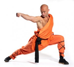 Shaolin techniques and poses