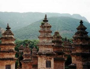 Shaolin_Pagoda_Forest,_Henan,_China_-_June_2001
