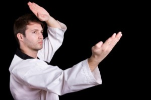 Shotokan Karate opening poses