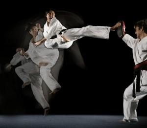 Martial_Arts_Kick