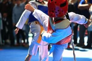 Taekwondo competitions and kicks