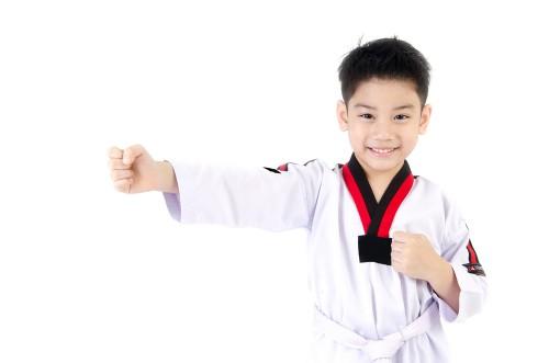 philosophy of taekwondo essay