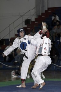 Tang Soo Do kick