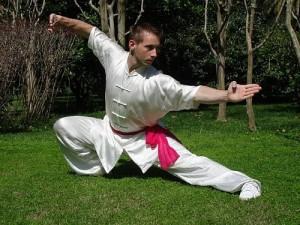 Wushu pose